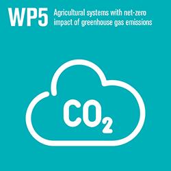 WP5 ikon, illustration.